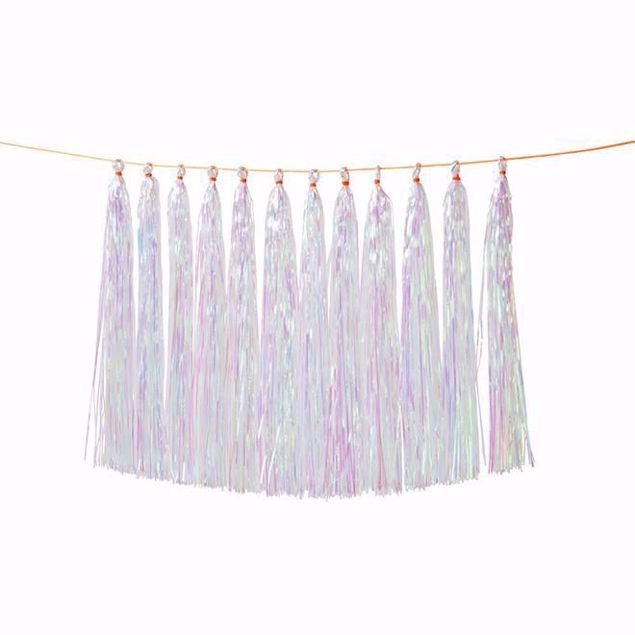 Picture of Girlande Tassel Mulitcolor Iridescent