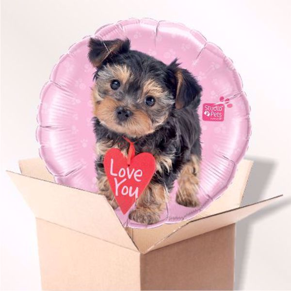 Picture of Folienballon Love you Hündchen im Karton