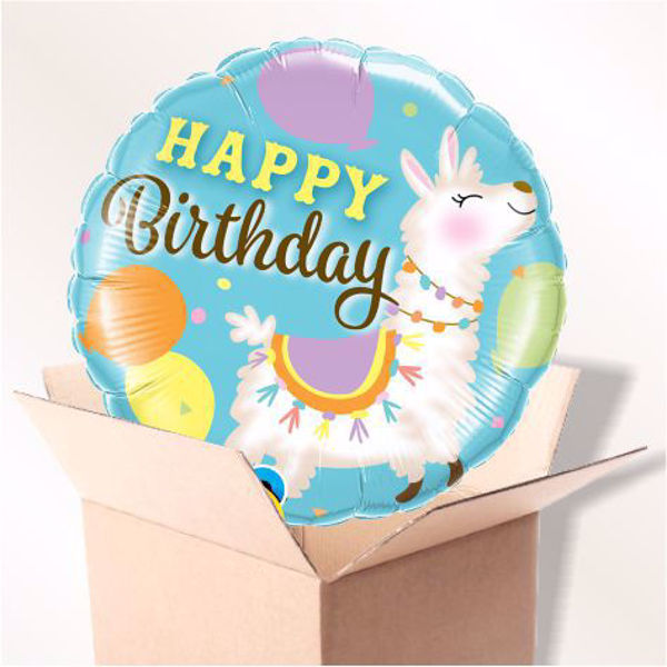Bild von Folienballon Birthday Lama im Karton